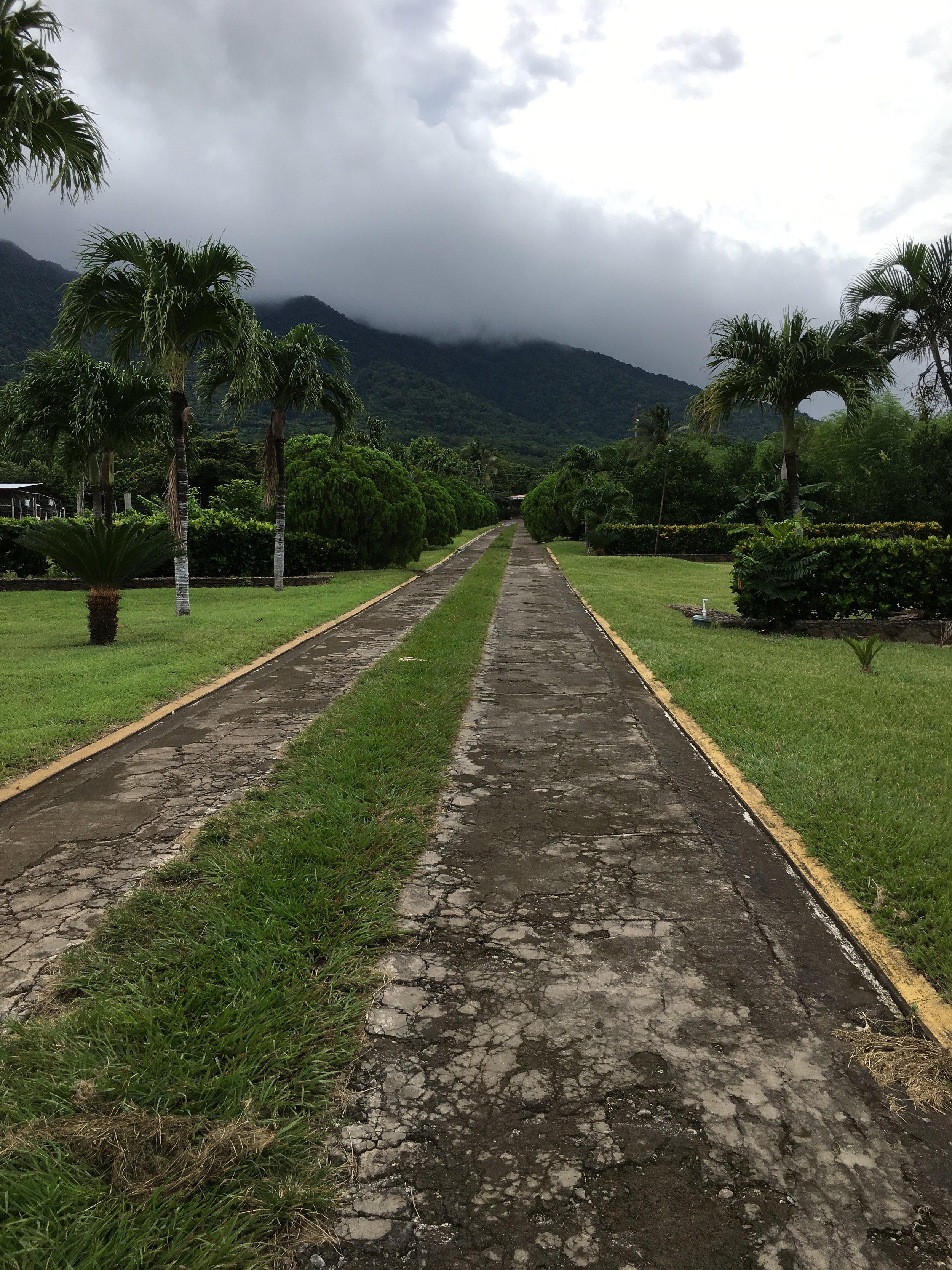 Start at the Ecological Station, walk 2 km on paved/semi-paved roads