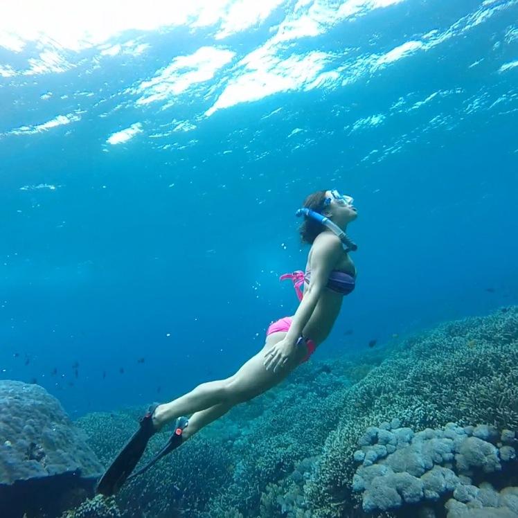 Snorkeling at Mangrove Point