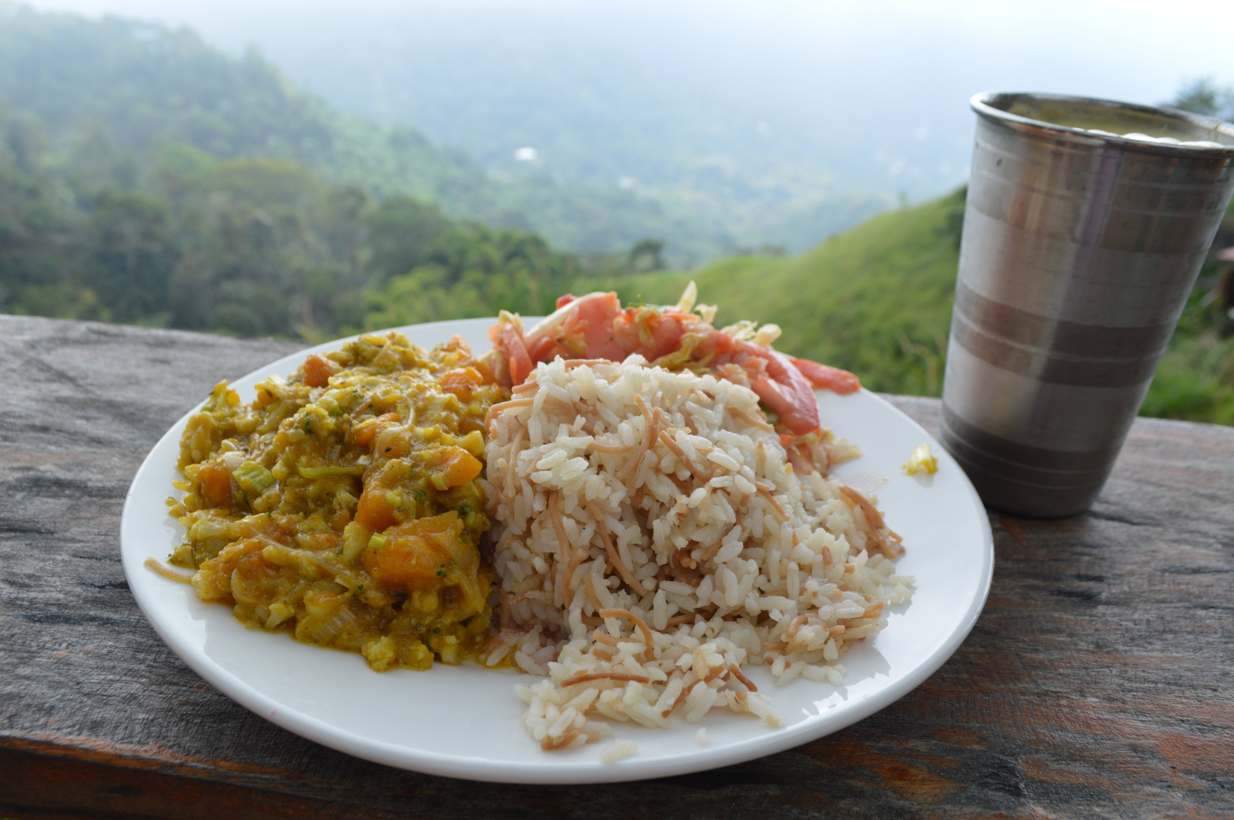 Meal of the Day: Curried vegetables and avocado tomato salad with rice