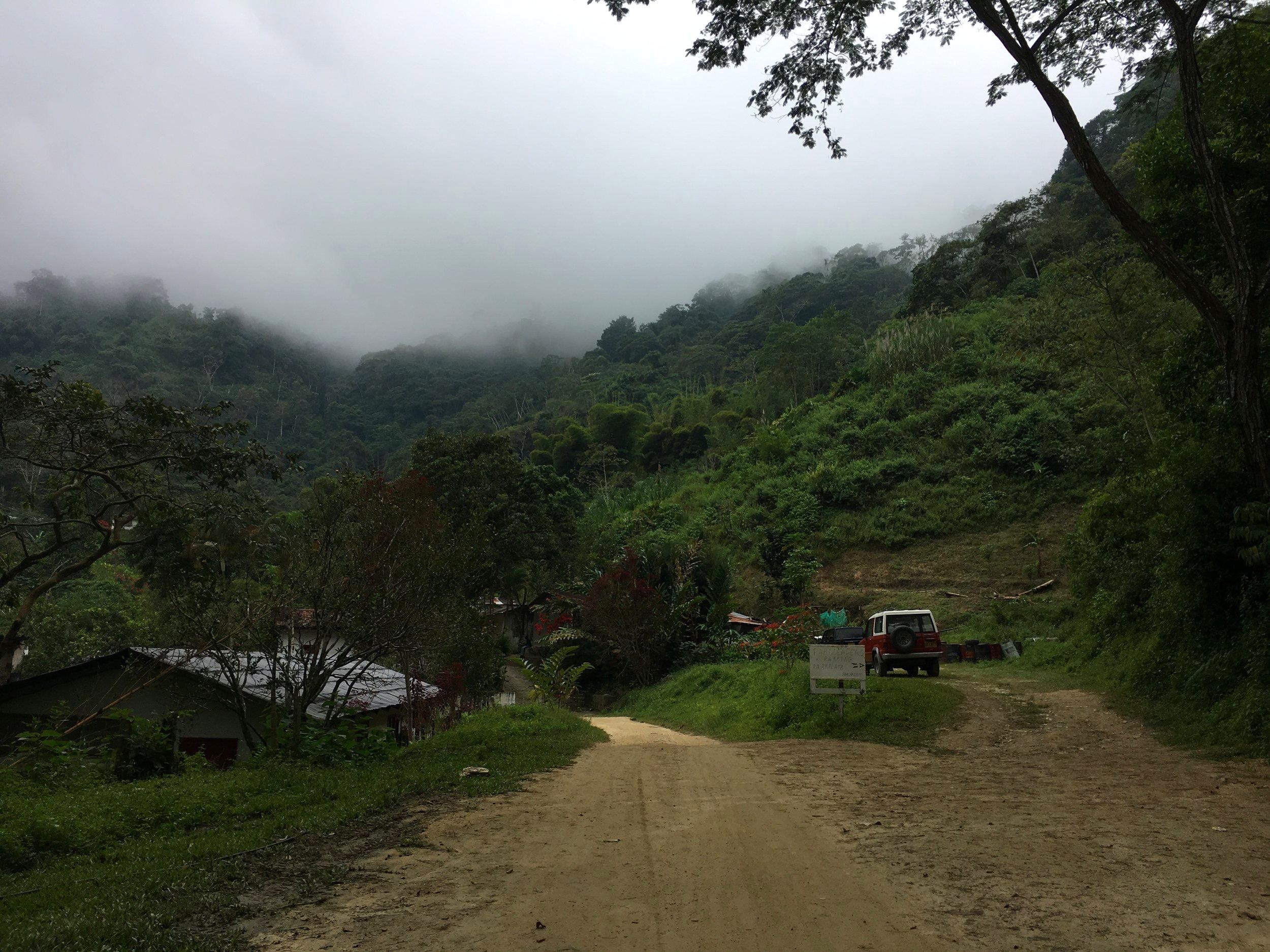The road leading to Finca La Victoria